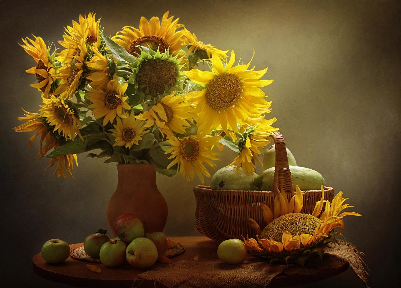 Обои Цветы Яблоки Корзинка Подсолнухи Еда Ваза Натюрморт Корзина Подсолнечник Пища Продукты питания