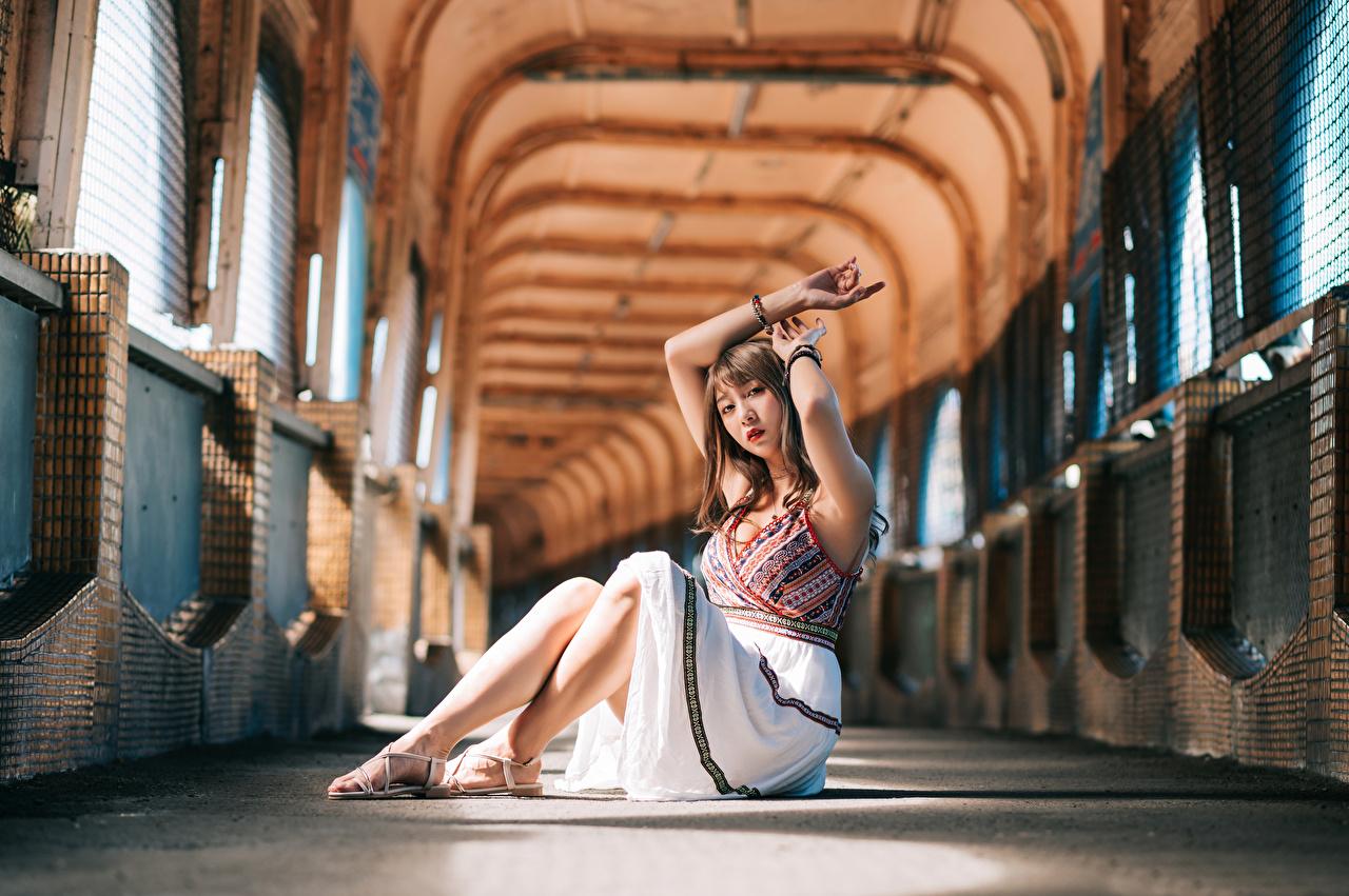 Фото Размытый фон Девушки азиатки сидящие смотрят Платье боке девушка молодая женщина молодые женщины Азиаты азиатка сидя Сидит Взгляд смотрит платья