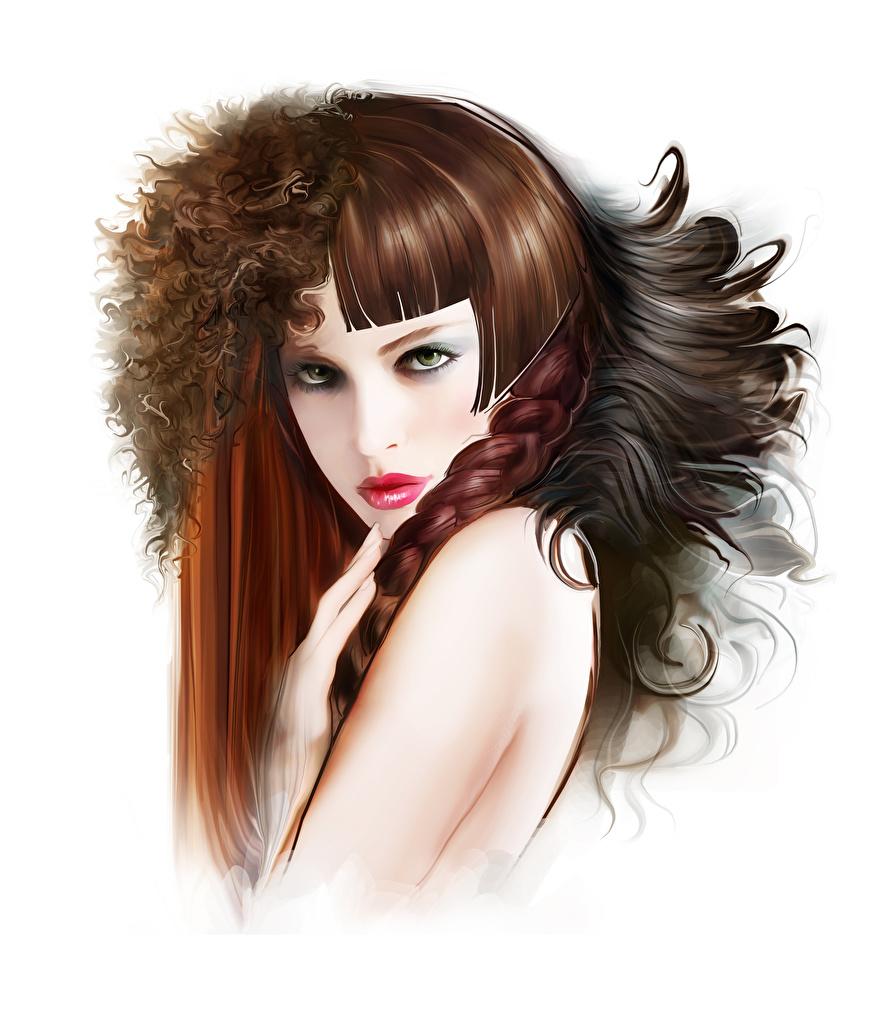Фотография Шатенка Коса Волосы Девушки Белый фон Рисованные косички