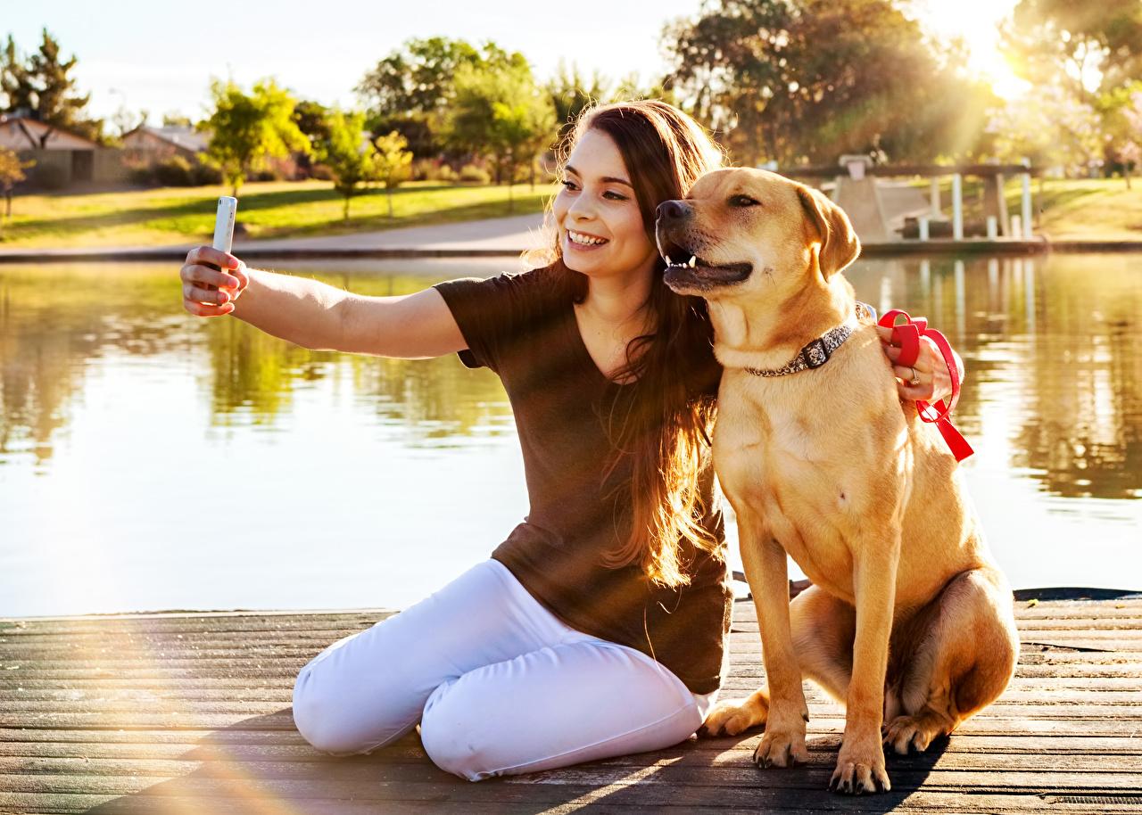 Картинки Лабрадор-ретривер собака Шатенка Селфи улыбается Смартфон молодые женщины Сидит животное Собаки шатенки Улыбка смартфоны сматфоном девушка Девушки молодая женщина сидя сидящие Животные