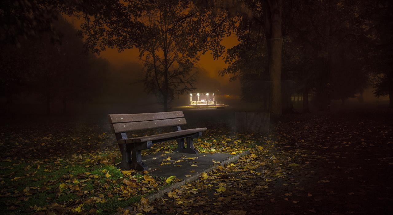 Фото Природа осенние Парки ночью Скамья Осень Ночь в ночи Ночные Скамейка