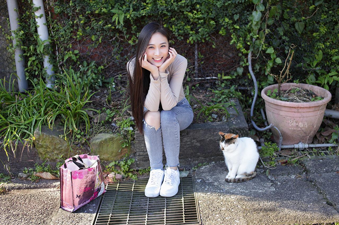 Фото Кошки Брюнетка Улыбка молодые женщины азиатки сидя Сумка Взгляд кот коты кошка брюнетки брюнеток улыбается девушка Девушки молодая женщина Азиаты азиатка Сидит сидящие смотрит смотрят