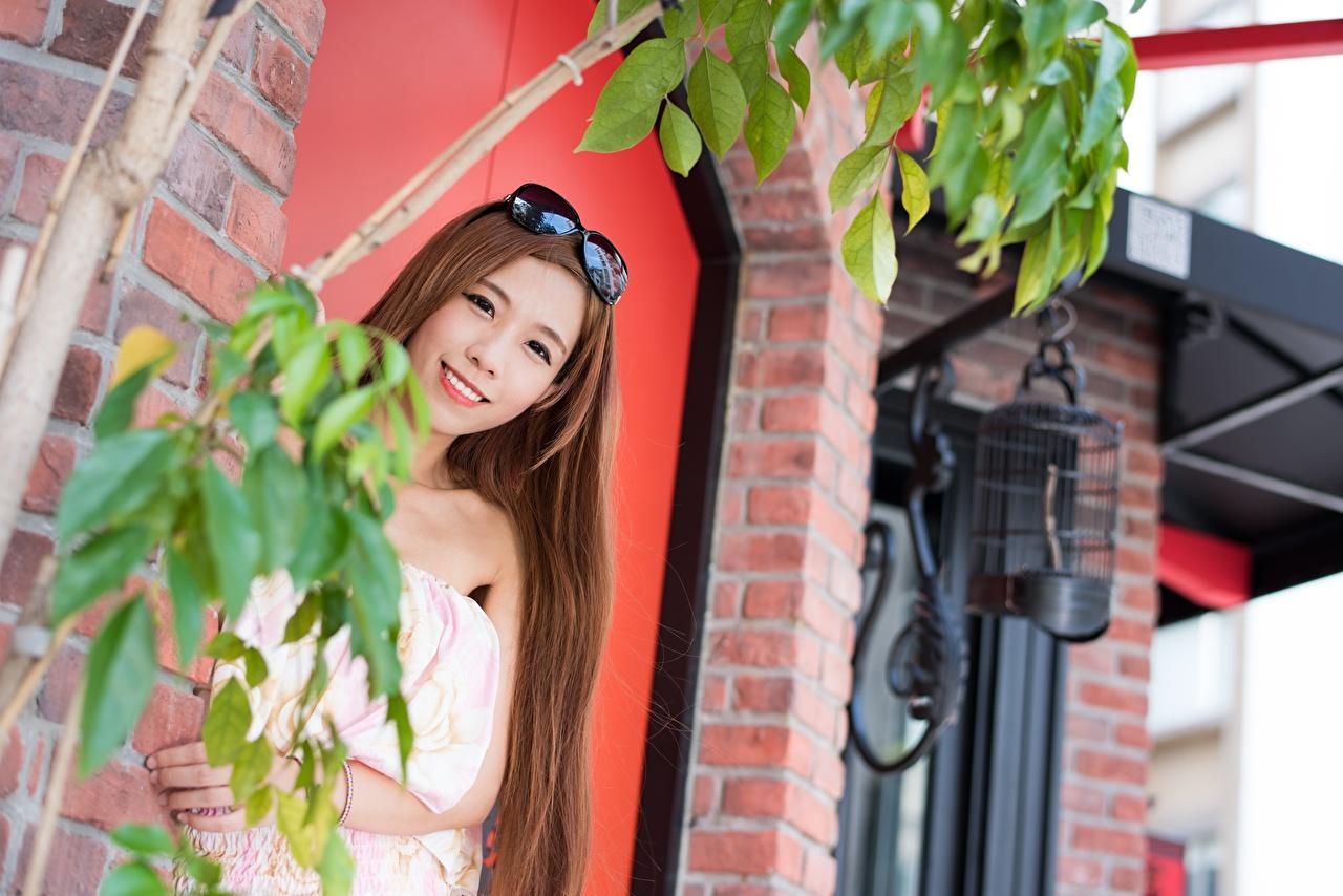 Фотография шатенки Улыбка молодые женщины Азиаты очков смотрит Шатенка улыбается девушка Девушки молодая женщина азиатки азиатка Очки очках Взгляд смотрят