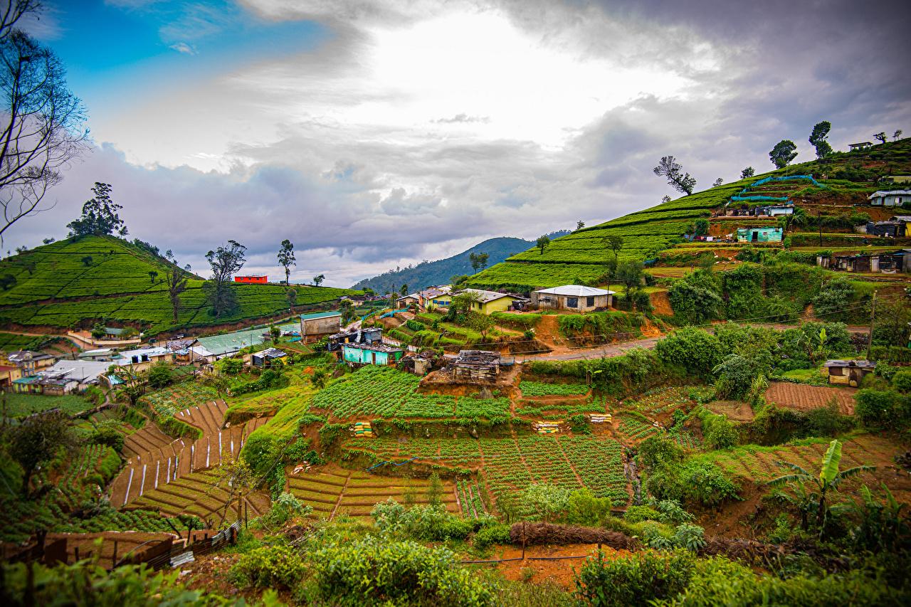 Фото Шри-Ланка Nuwara Eliya Горы Природа Поля Облака гора облако облачно