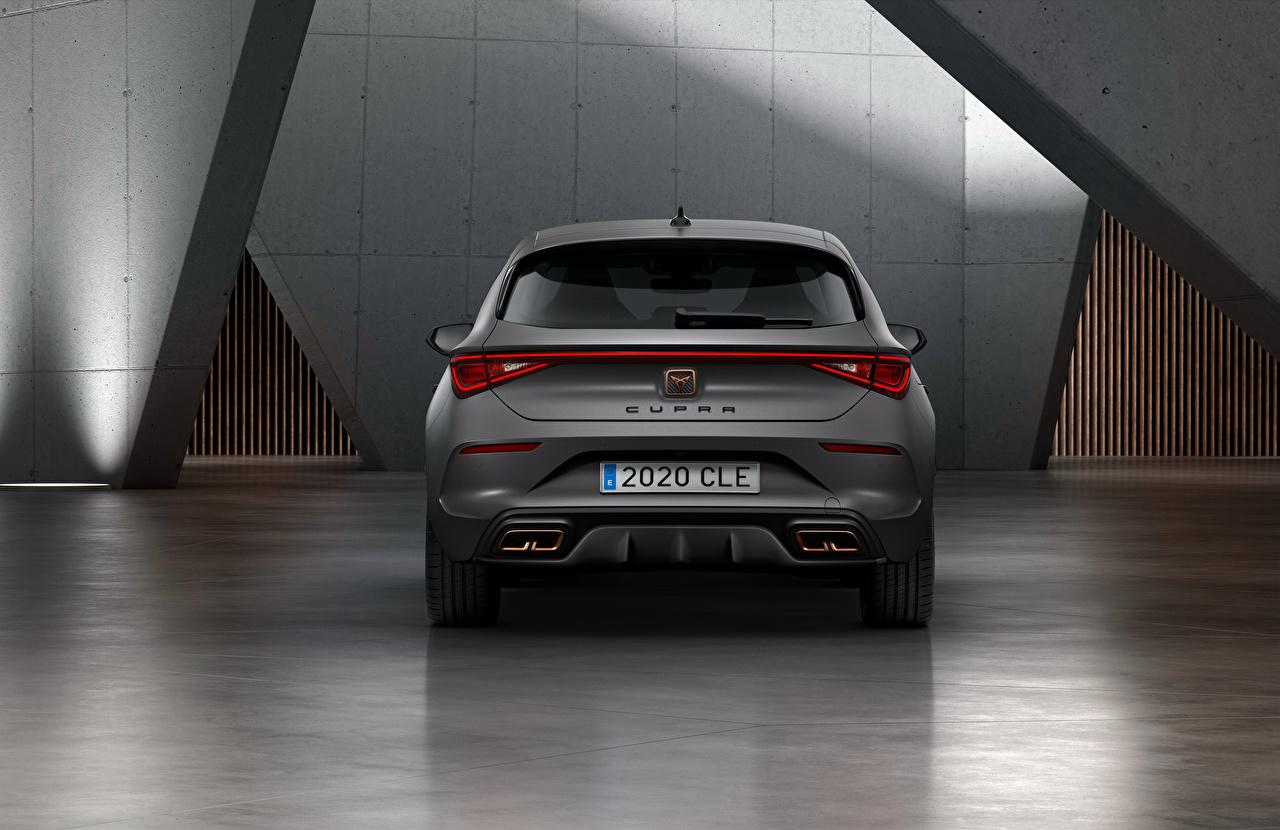 Фотография Seat Cupra, Leon, eHybrid, Worldwide, 2020 серые Сзади машины Сиат Серый серая авто машина вид сзади автомобиль Автомобили