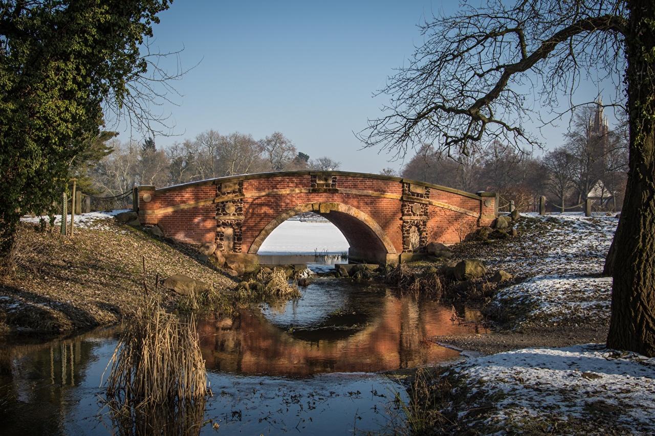 Картинки Германия Dessau-Wörlitz Зима Мосты парк Города мост зимние Парки город