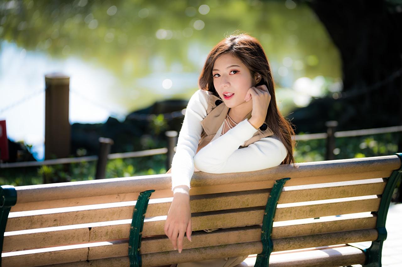 Картинка боке позирует Девушки азиатка Руки Скамейка смотрят Размытый фон Поза девушка молодые женщины молодая женщина Азиаты азиатки рука Скамья Взгляд смотрит