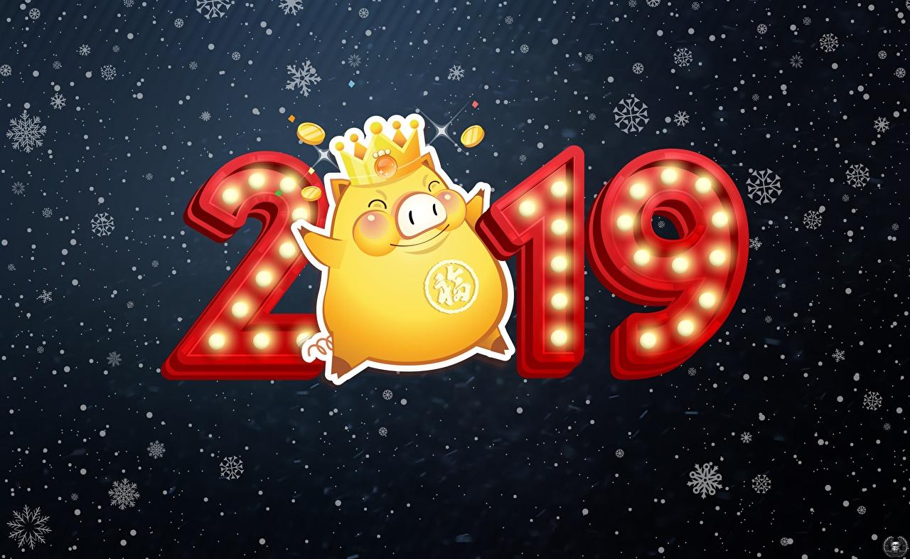 Фотографии 2019 Новый год Рождество