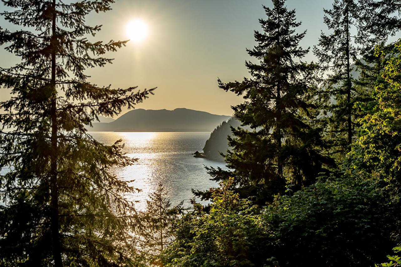 Фотография Банф Канада ели солнца Природа парк Озеро Рассветы и закаты Ель Солнце Парки рассвет и закат