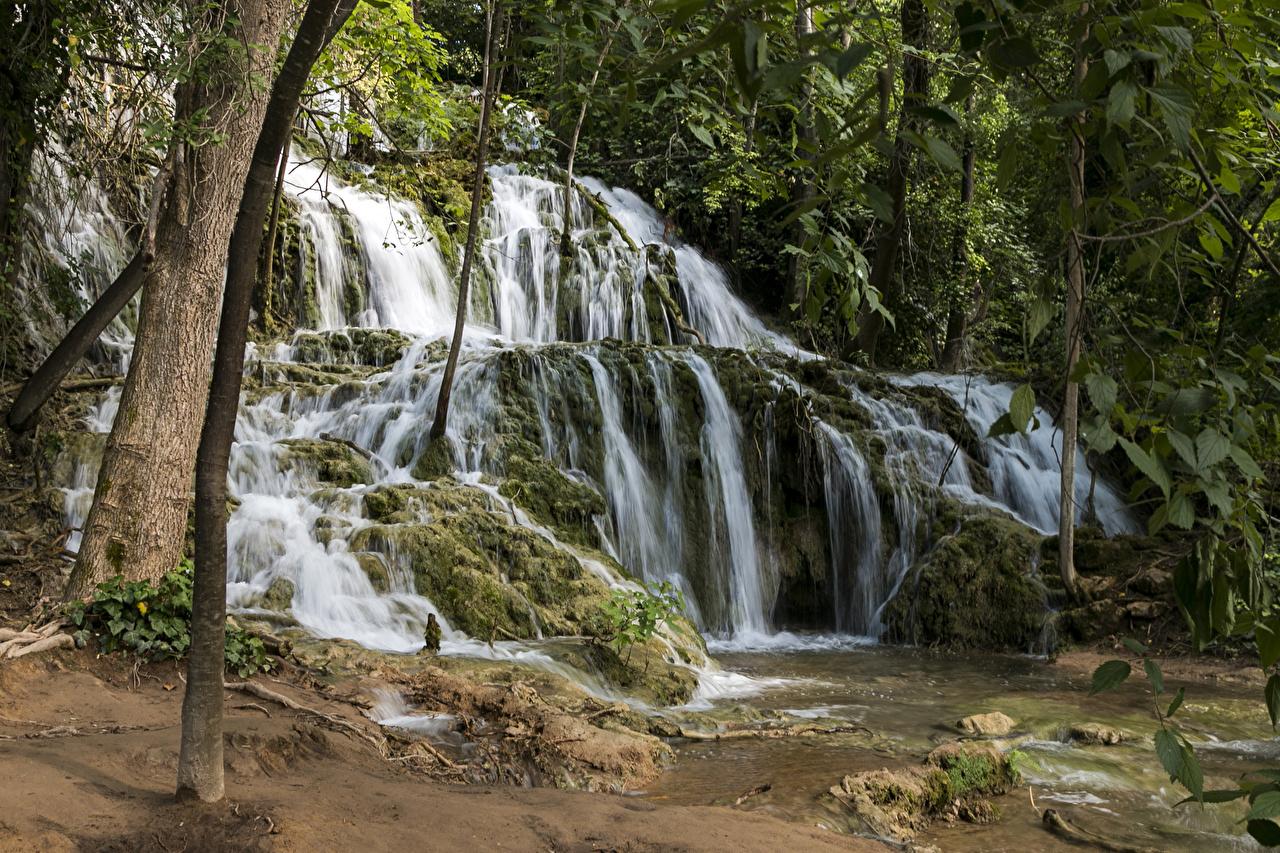 Картинки Хорватия Krka National Park скале Природа Водопады парк Мох дерево Утес Скала скалы Парки мха мхом дерева Деревья деревьев