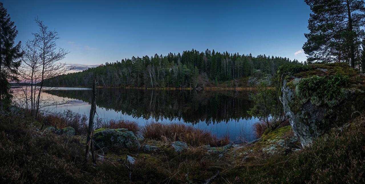 Картинки Швеция Grodinge Природа Леса Реки Камни Вечер речка Камень