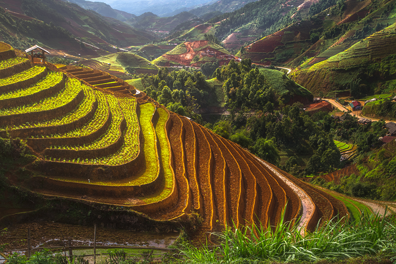 Картинки Вьетнам Mu Cang Chai Природа Поля Холмы