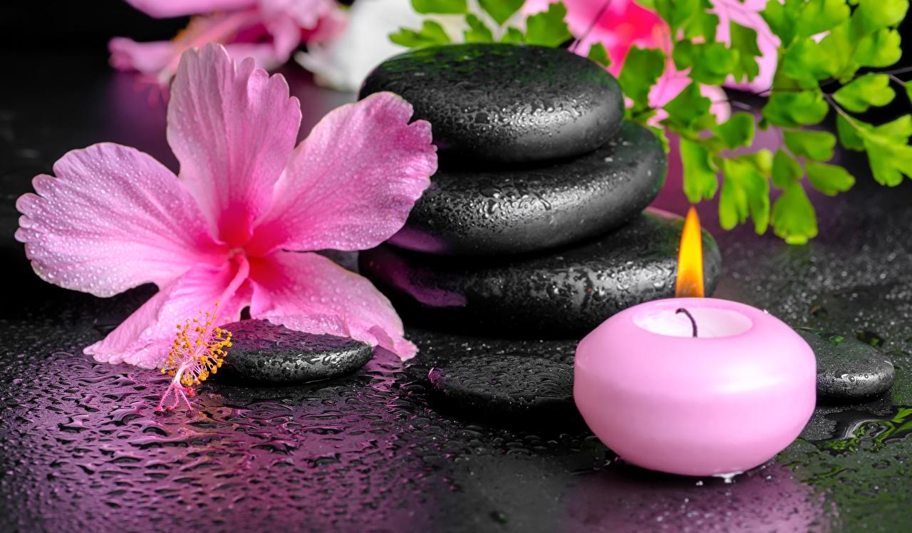 Картинка Спа Цветы капельки Гибискусы Свечи Камень физиотерапия капля Капли цветок капель Камни