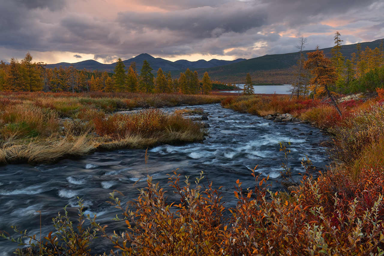 Фотографии Россия Kalmykia Горы Природа осенние Леса Пейзаж речка гора Осень лес река Реки