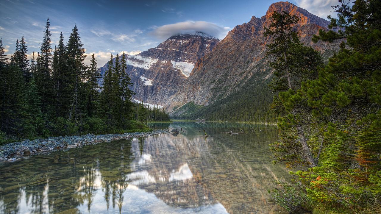 Картинки Канада Jasper National Park Mount Edith Cavell HDR ели Горы Природа парк Озеро мха HDRI Ель гора Парки Мох мхом