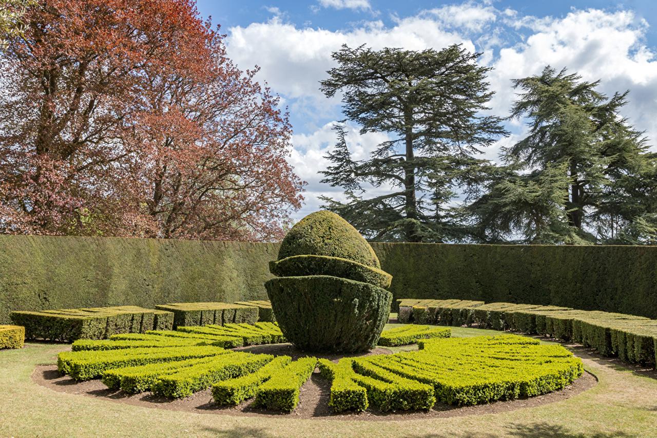 Фотографии Англия Ascott House Gardens Buckinghamshire Природа Парки кустов Дизайн парк Кусты дизайна