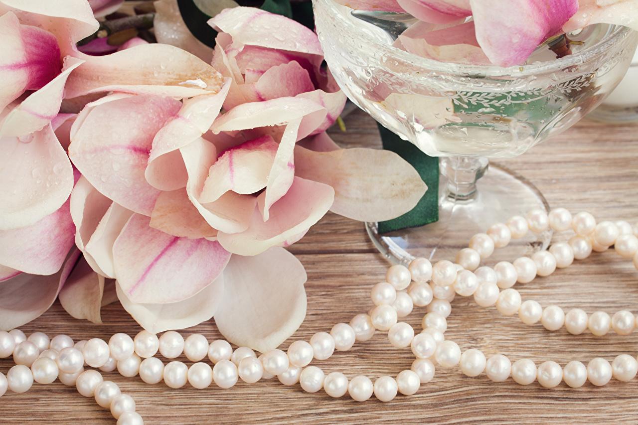 Обои для рабочего стола Жемчуг бусы цветок Магнолия Цветы