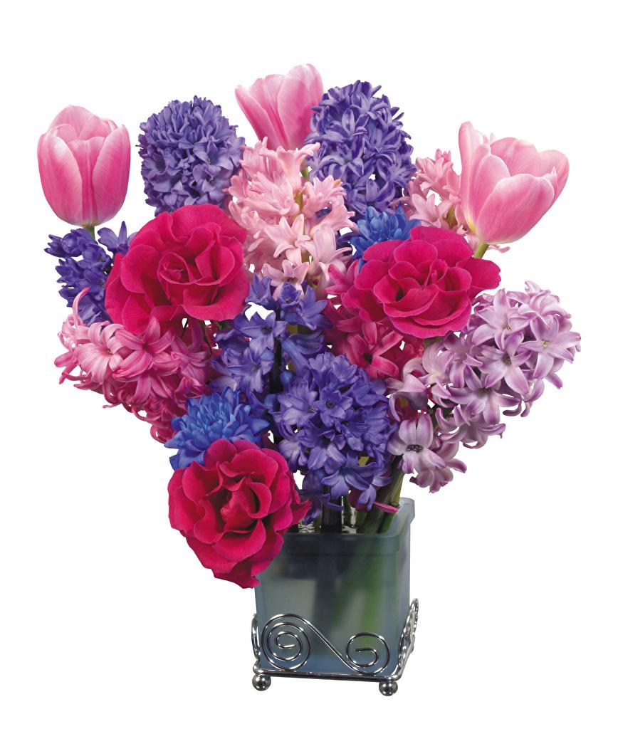 Фотография Букеты роза тюльпан Цветы вазе Гиацинты белым фоном букет Розы Тюльпаны цветок вазы Ваза Белый фон белом фоне