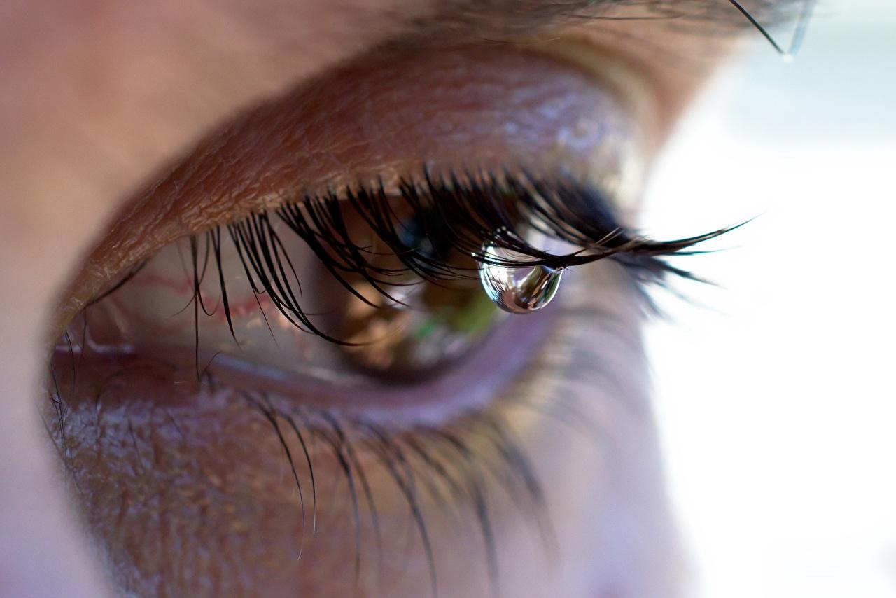 Фото Глаза ресницы плачет капля Крупным планом Ресница Слезы плачут Капли капель капельки вблизи