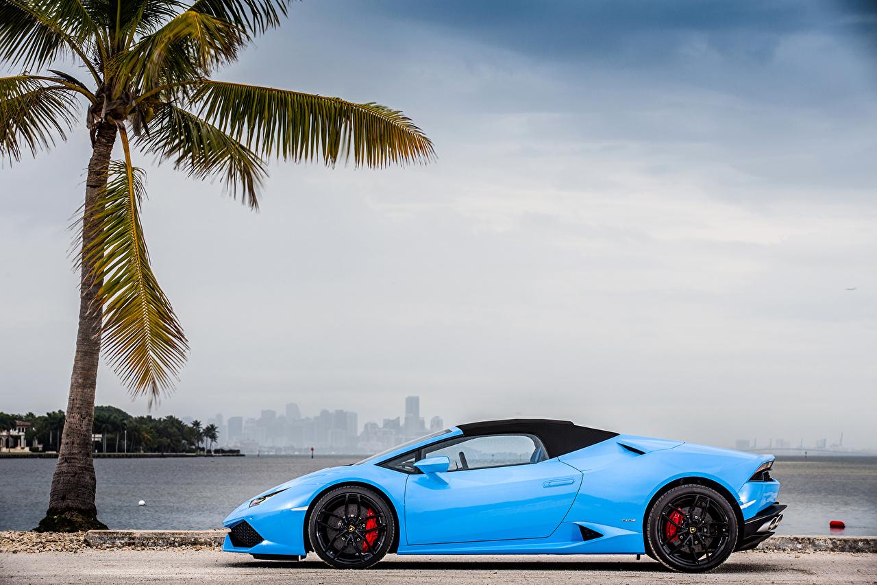Фотография Lamborghini 2015-16 Huracán LP 610-4 Spyder голубые пальма авто Сбоку Металлик Ламборгини голубых Голубой голубая пальм Пальмы машина машины автомобиль Автомобили