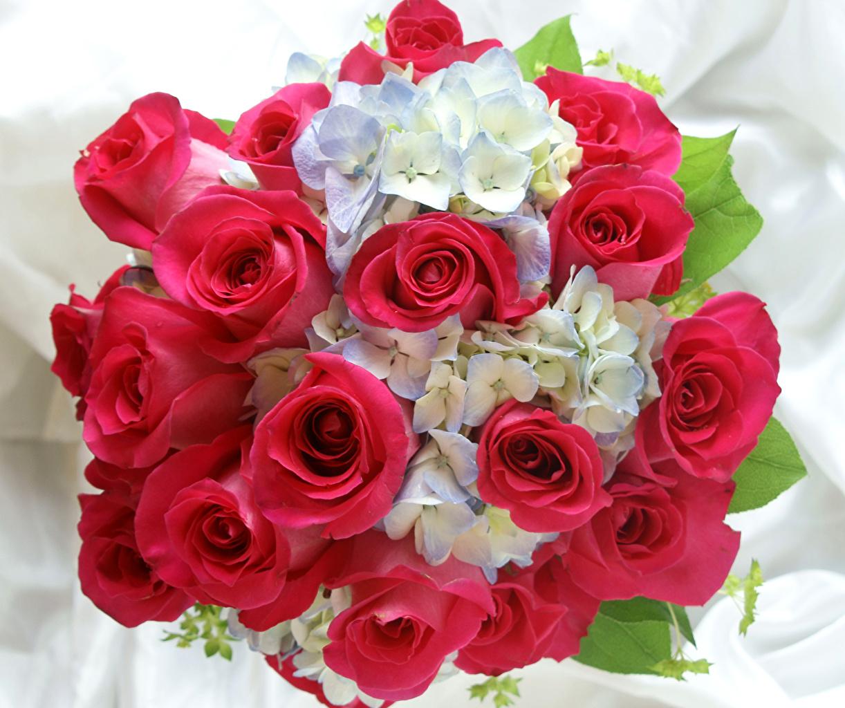 Розовоз Доставка цветов в Ижевске Тел 774646