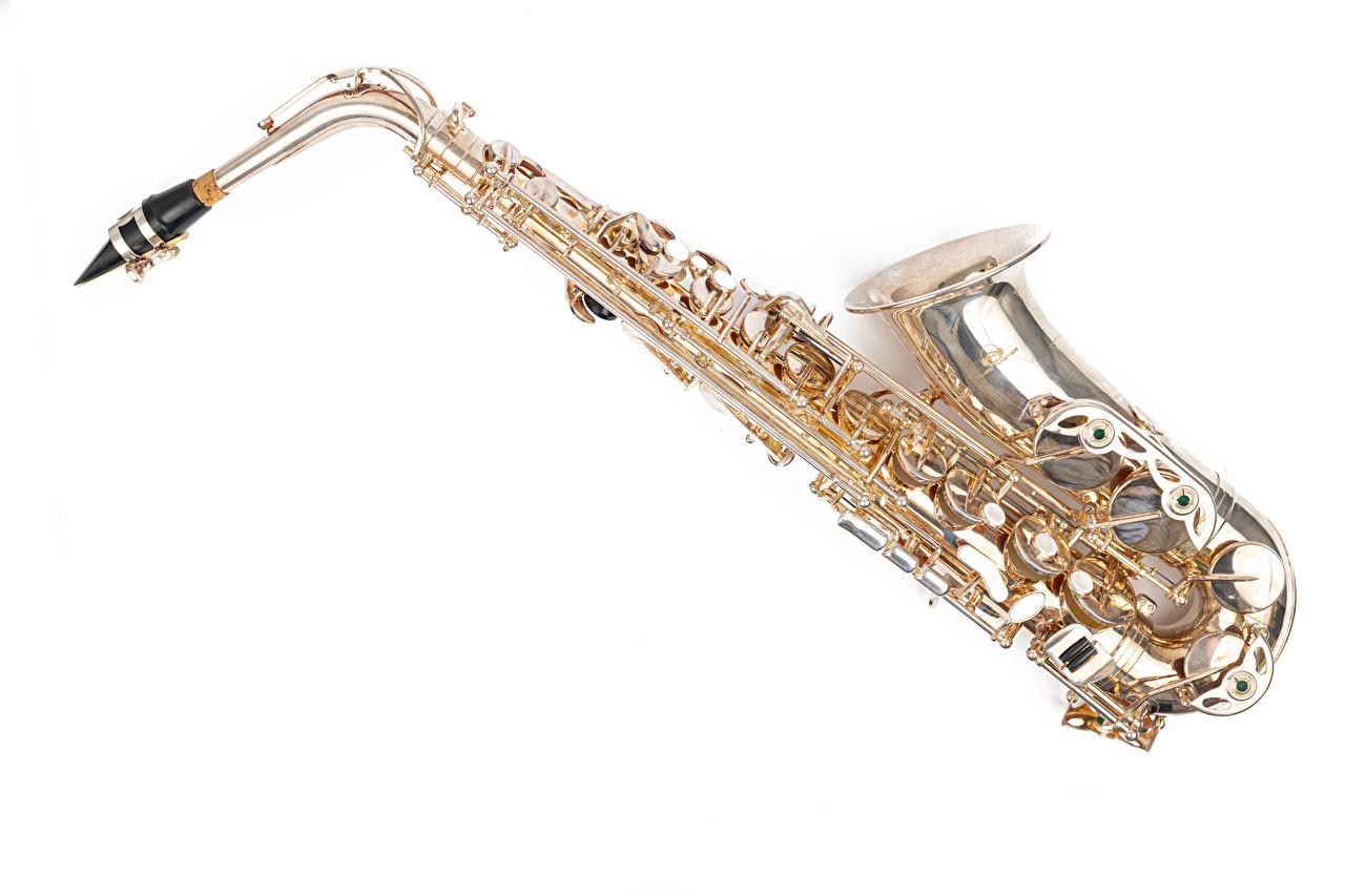 Картинки saxophone Музыка Белый фон Музыкальные инструменты белом фоне белым фоном