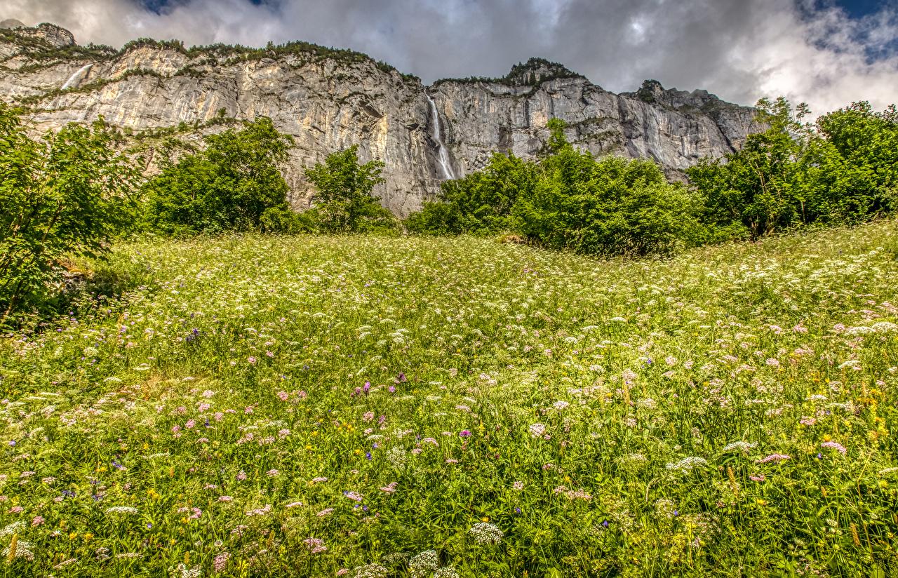 Фотография Альпы Швейцария Горы Природа Водопады Трава Кусты