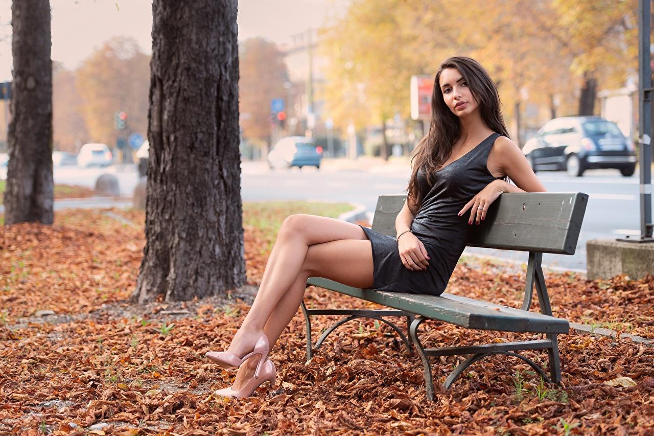 Фотографии лист шатенки Осень Девушки ног рука сидя Скамейка Платье туфель Листва Листья Шатенка осенние девушка молодая женщина молодые женщины Ноги Руки Сидит Скамья сидящие платья Туфли туфлях