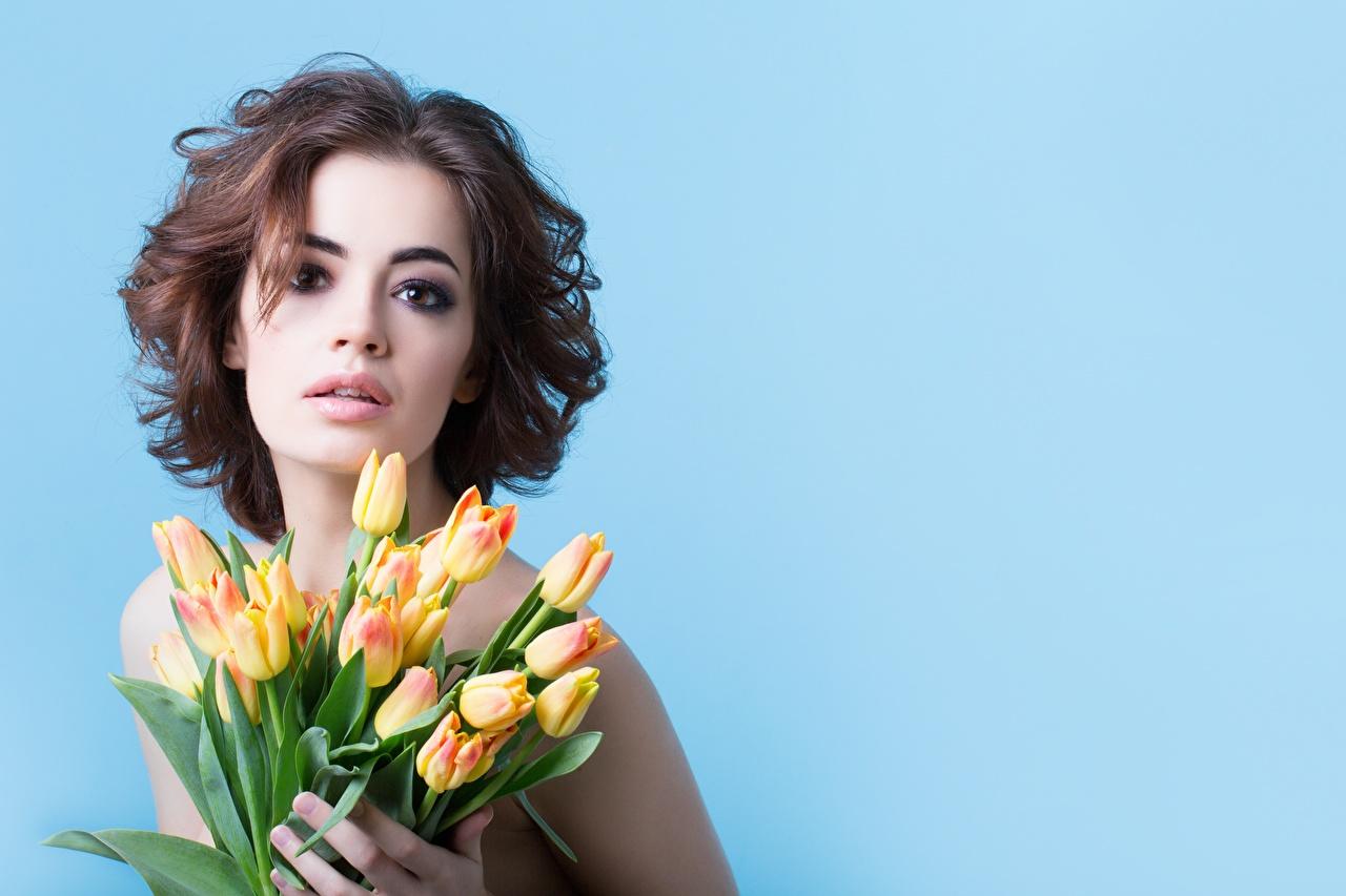 Фотография шатенки Модель Букеты Девушки Тюльпаны Цветы смотрит Цветной фон Шатенка фотомодель букет тюльпан девушка молодые женщины молодая женщина цветок Взгляд смотрят