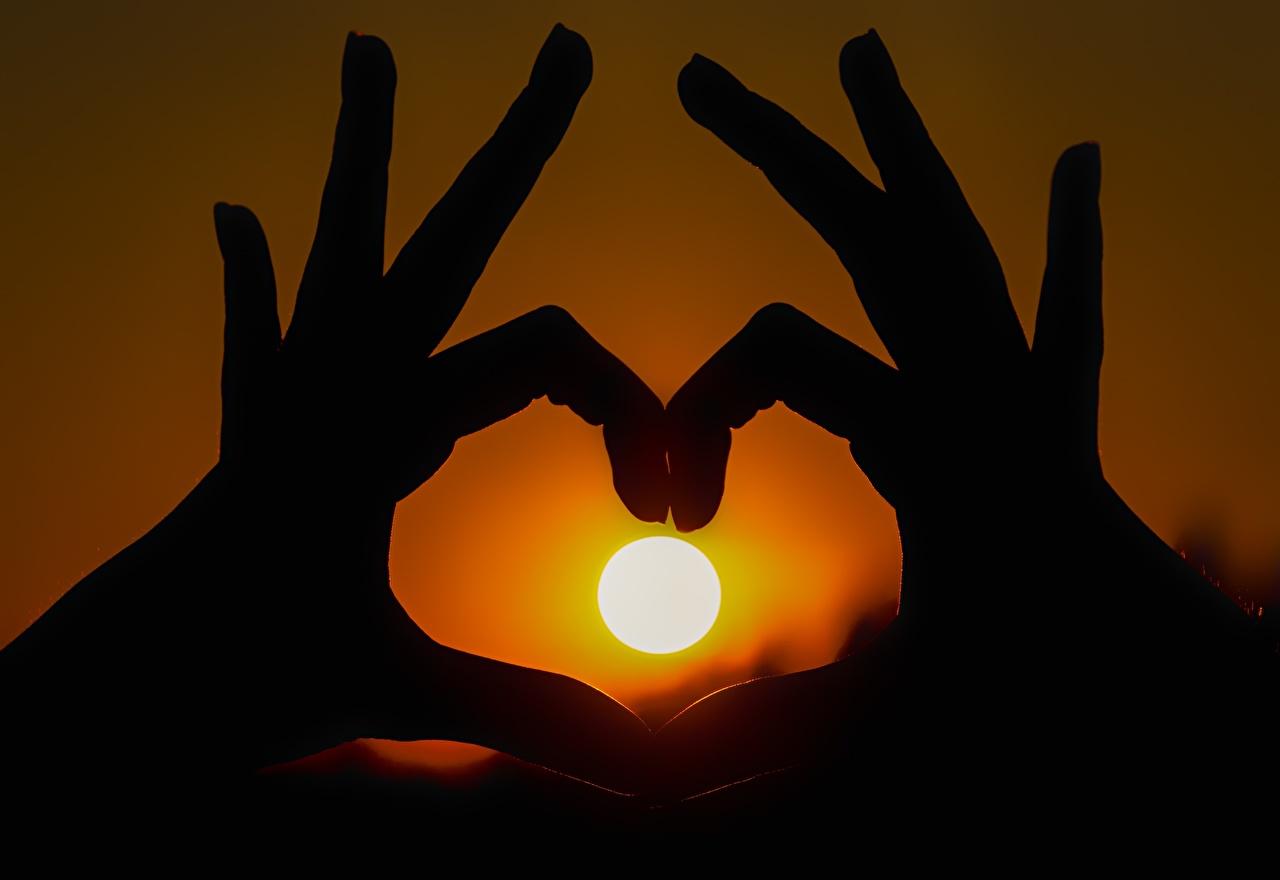 Фотография силуэты Солнце рассвет и закат рука Пальцы Крупным планом Силуэт силуэта солнца Рассветы и закаты Руки вблизи