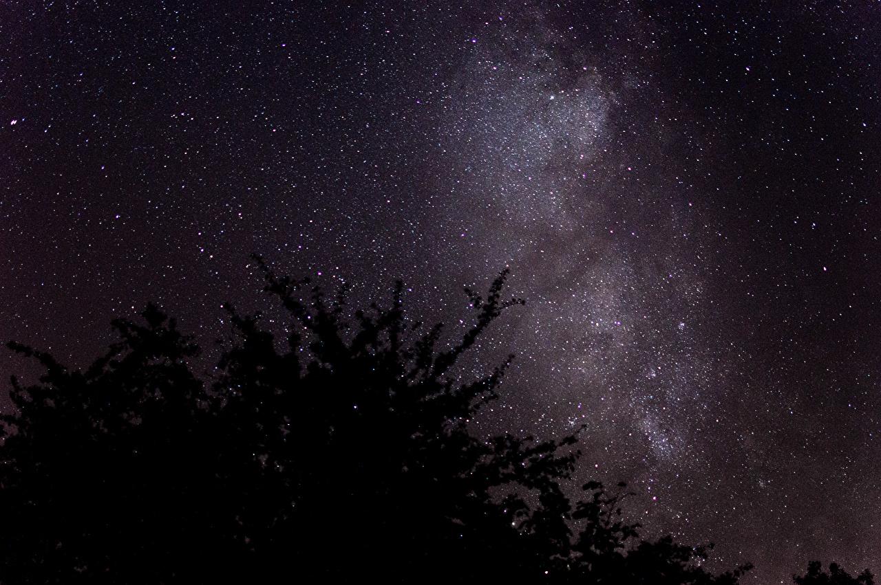 звездное небо Фотографии PNG  Векторы и PSDфайлы