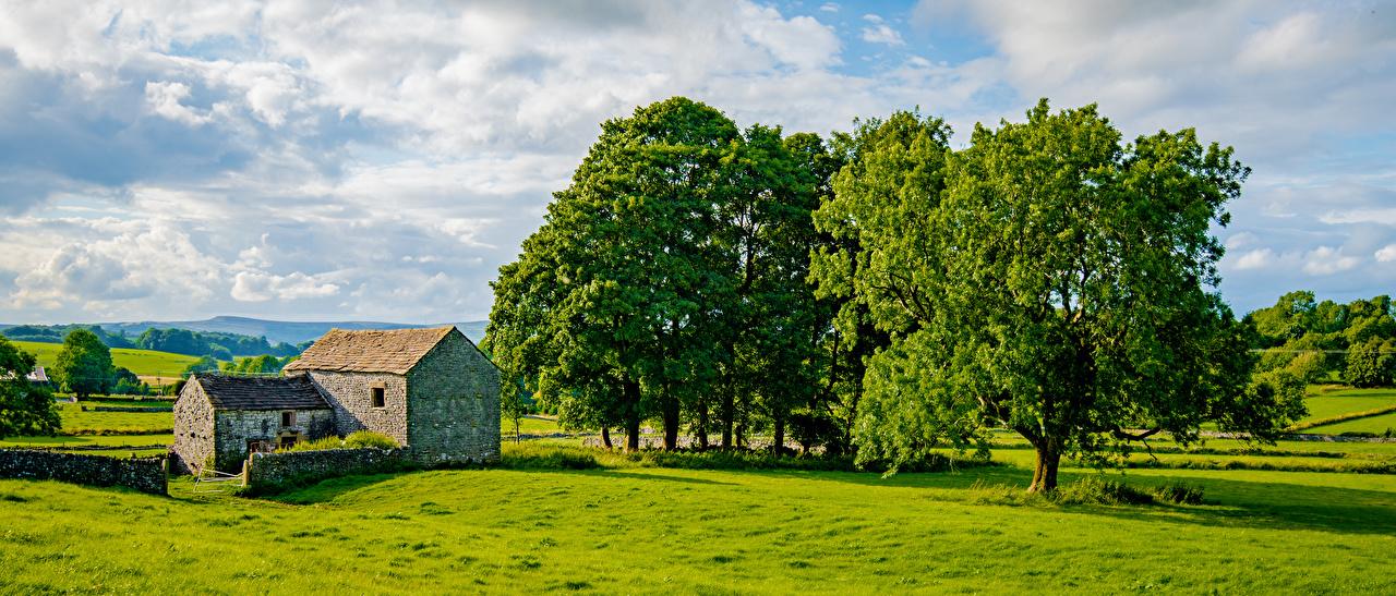 Картинка Англия Панорама Chelmorton Природа облако деревьев панорамная дерево дерева Облака Деревья облачно