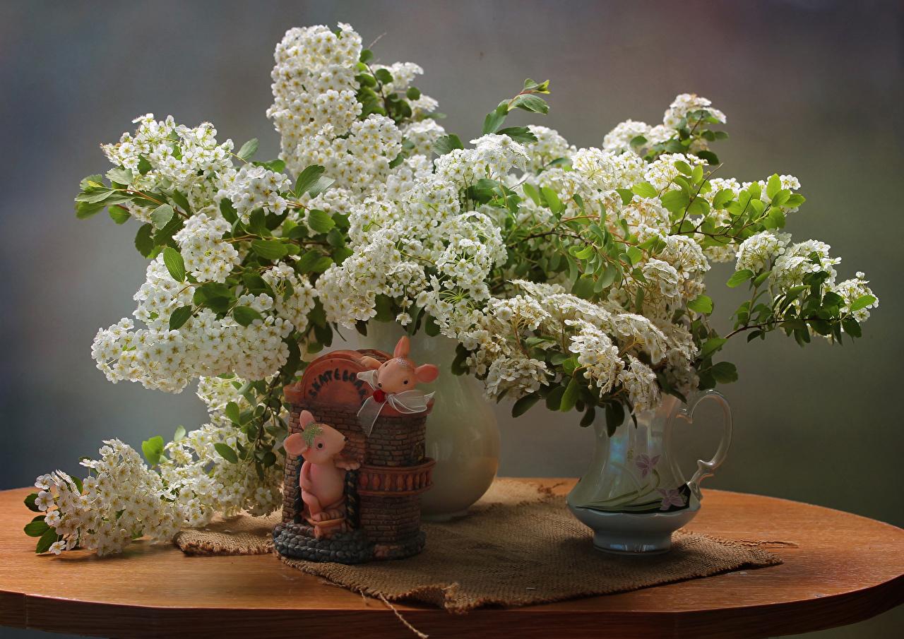 Фото Мыши Цветы Ваза Натюрморт Цветущие деревья