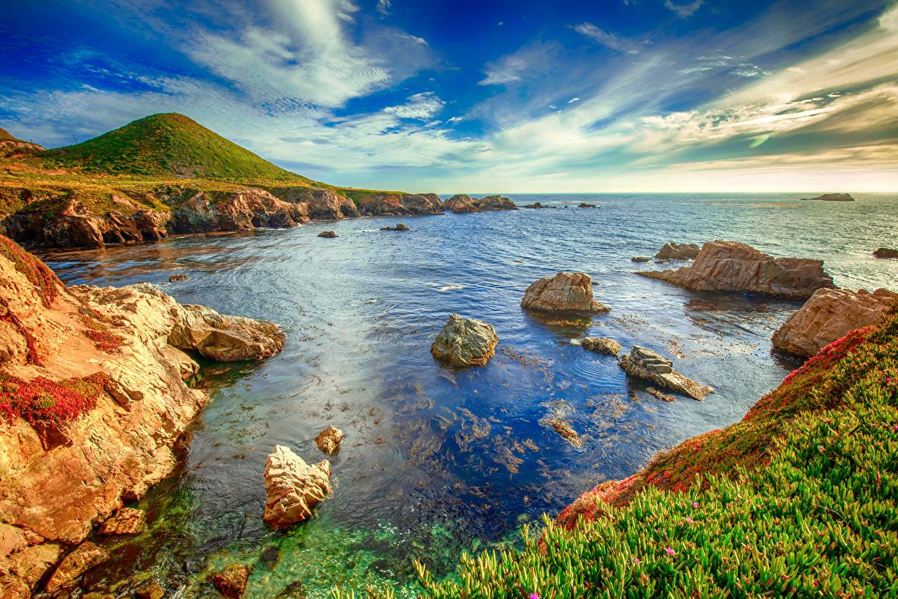 Картинки Калифорния штаты Big Sur Природа берег калифорнии США америка Побережье
