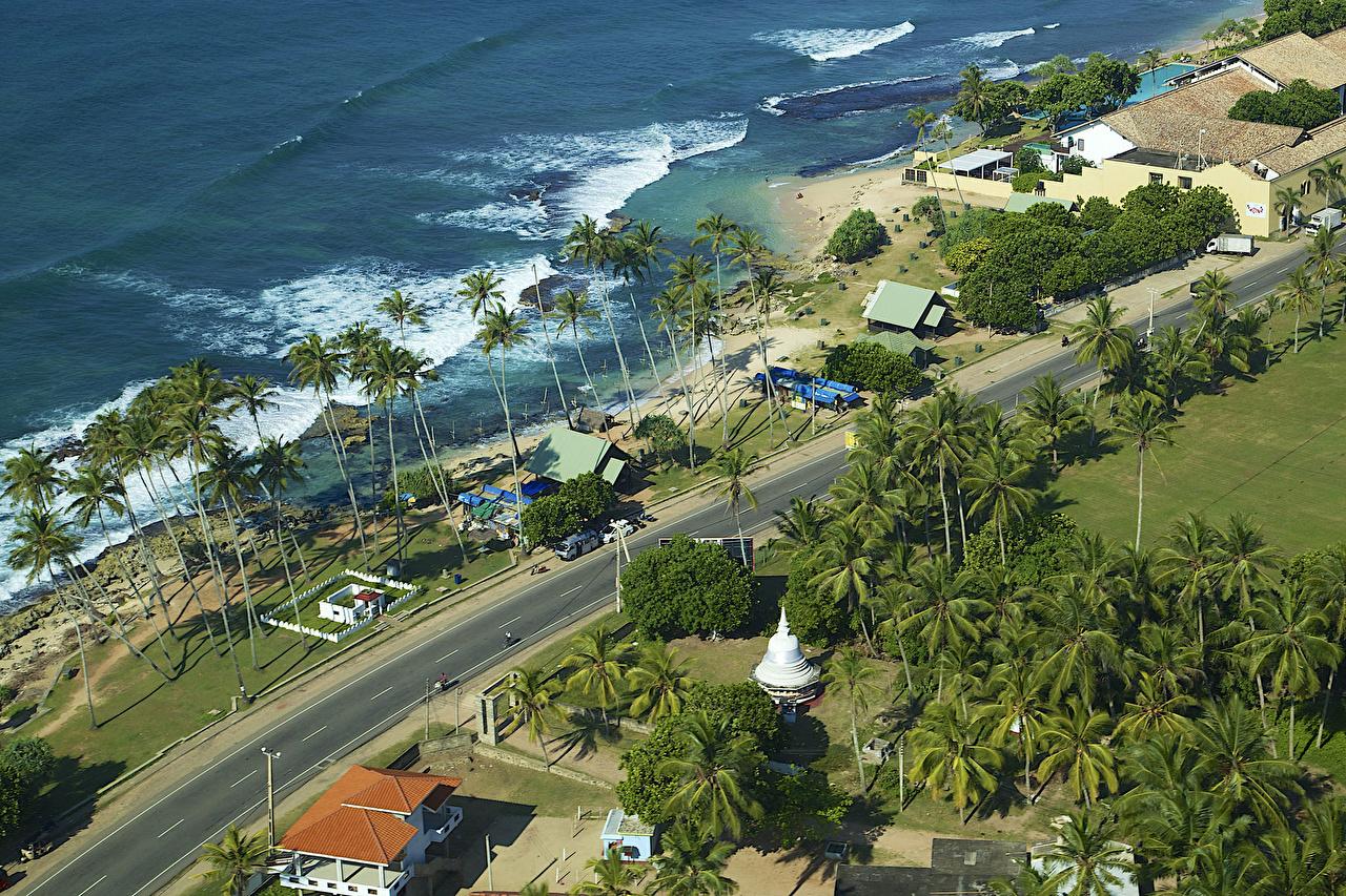 Фотография Шри-Ланка Koggala Природа Пальмы Дороги Тропики берег Сверху Побережье