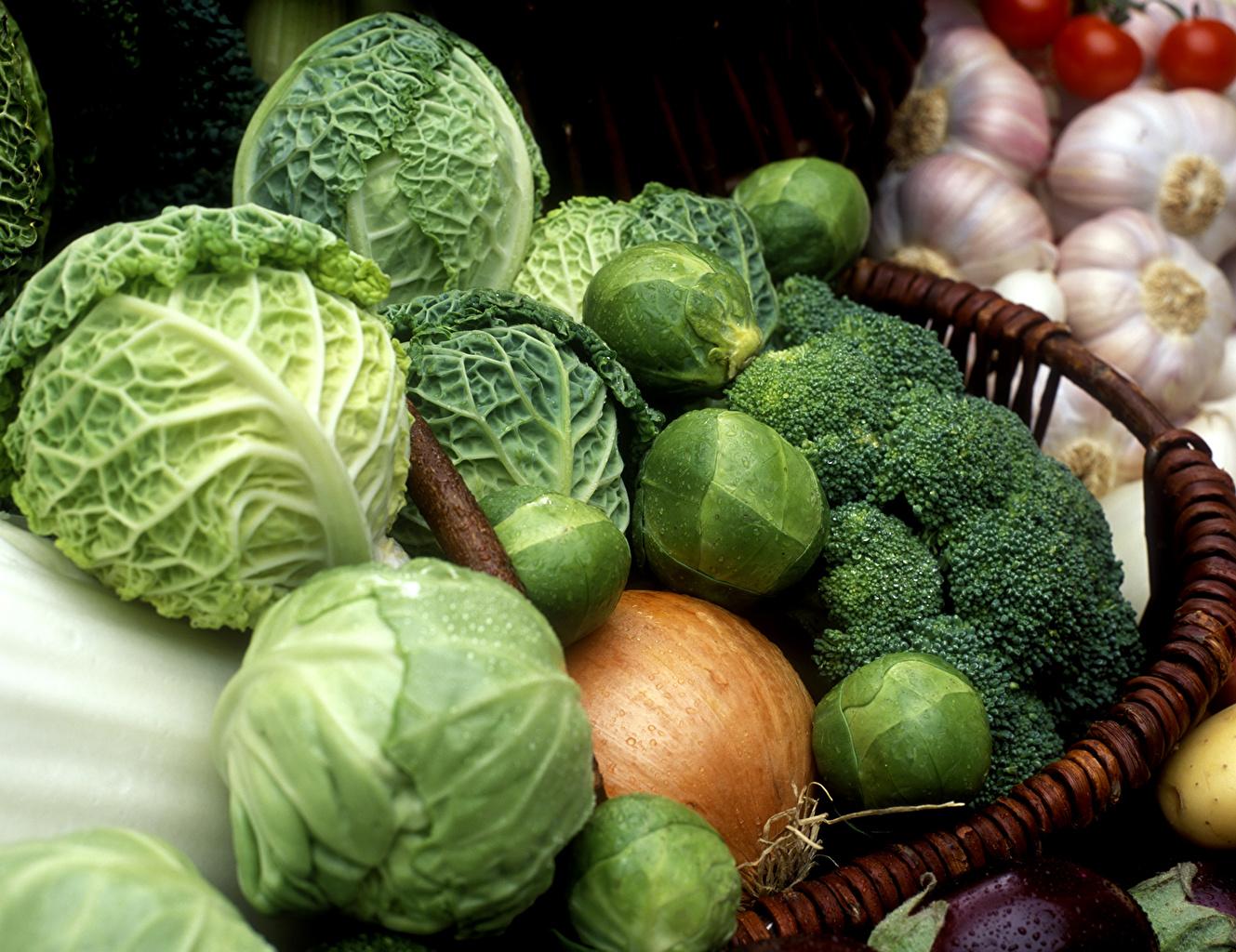Обои для рабочего стола Капуста Лук репчатый Пища Овощи Много Еда Продукты питания