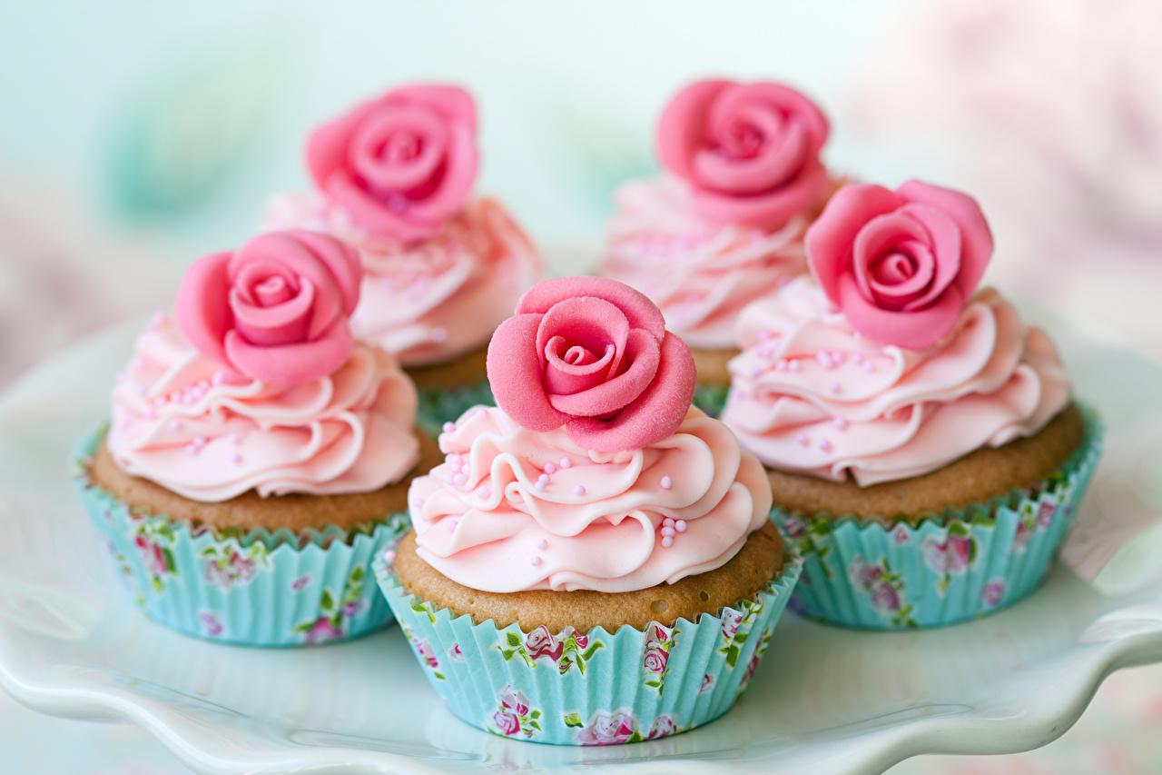 Фотография роза Капкейк кекс Пища сладкая еда Дизайн Розы Еда Продукты питания Сладости дизайна
