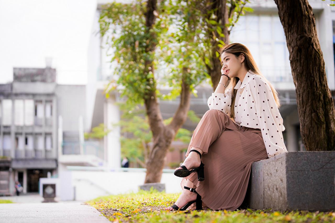 Картинка юбки шатенки боке Блузка Девушки Азиаты Сидит юбке Юбка Шатенка Размытый фон девушка молодая женщина молодые женщины азиатки азиатка сидя сидящие