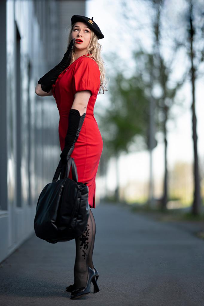 Обои для рабочего стола блондинки перчатках боке Берет позирует Девушки Сумка платья  для мобильного телефона Блондинка блондинок Перчатки Размытый фон Поза девушка молодая женщина молодые женщины Платье