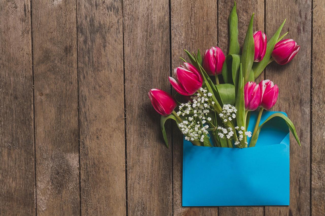 Картинки Конверт тюльпан Цветы Шаблон поздравительной открытки Доски Тюльпаны цветок