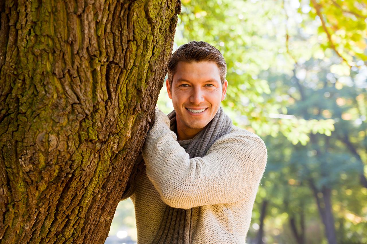 Картинки Свитер Мужчины Кора Взгляд Ствол дерева Улыбка свитере свитера мужчина смотрит смотрят улыбается