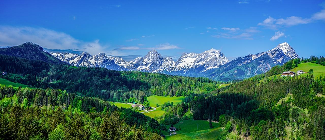 Фотография альп Австрия Панорама Долина Природа Леса Пейзаж Альпы панорамная лес