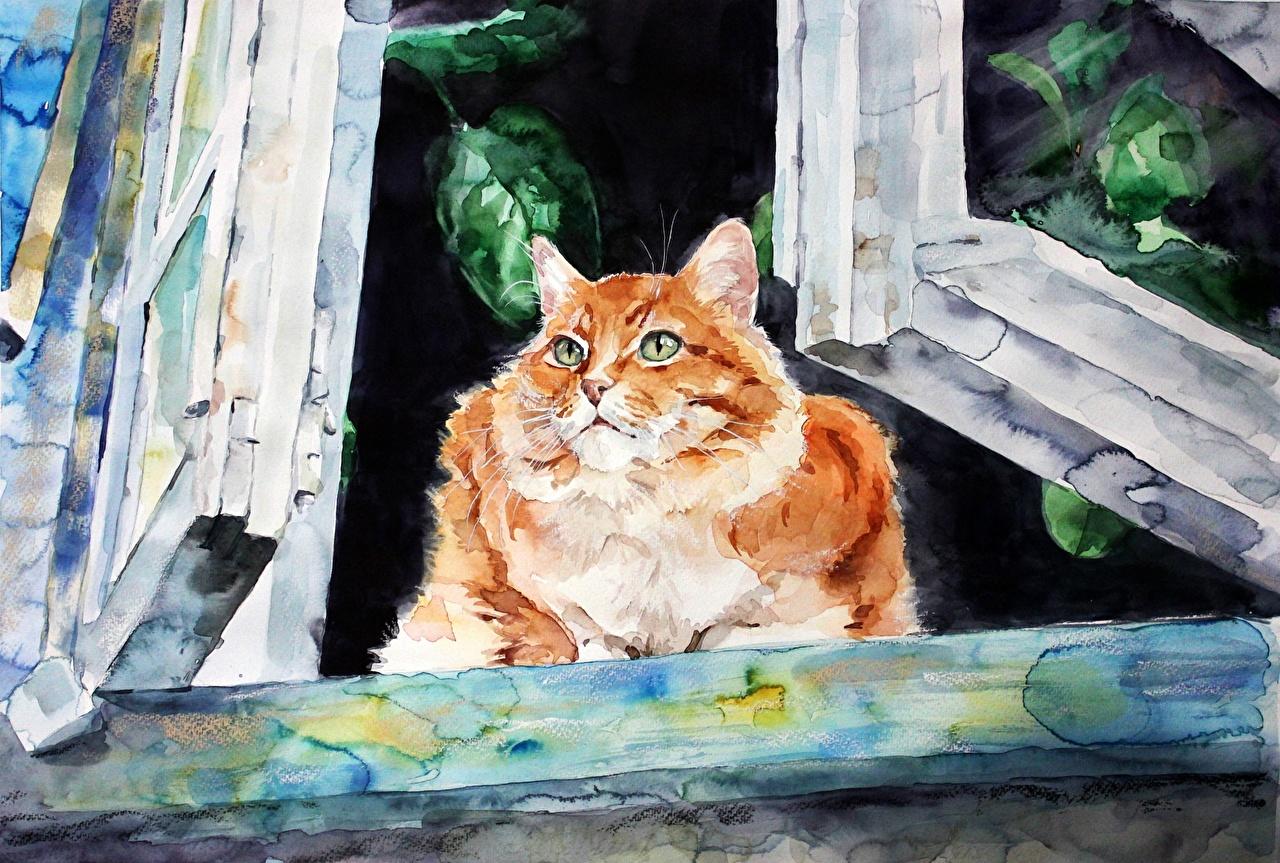 Фото Кошки Elenashved watercolor Окно Животные Рисованные кот коты кошка окна животное