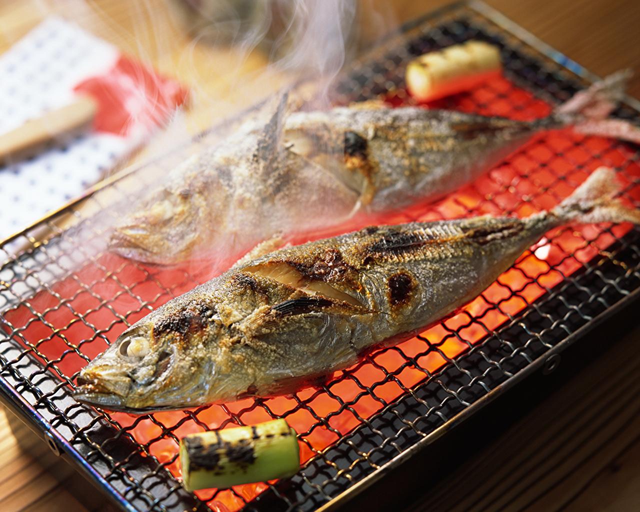 Картинка Рыба Продукты питания Морепродукты Еда Пища