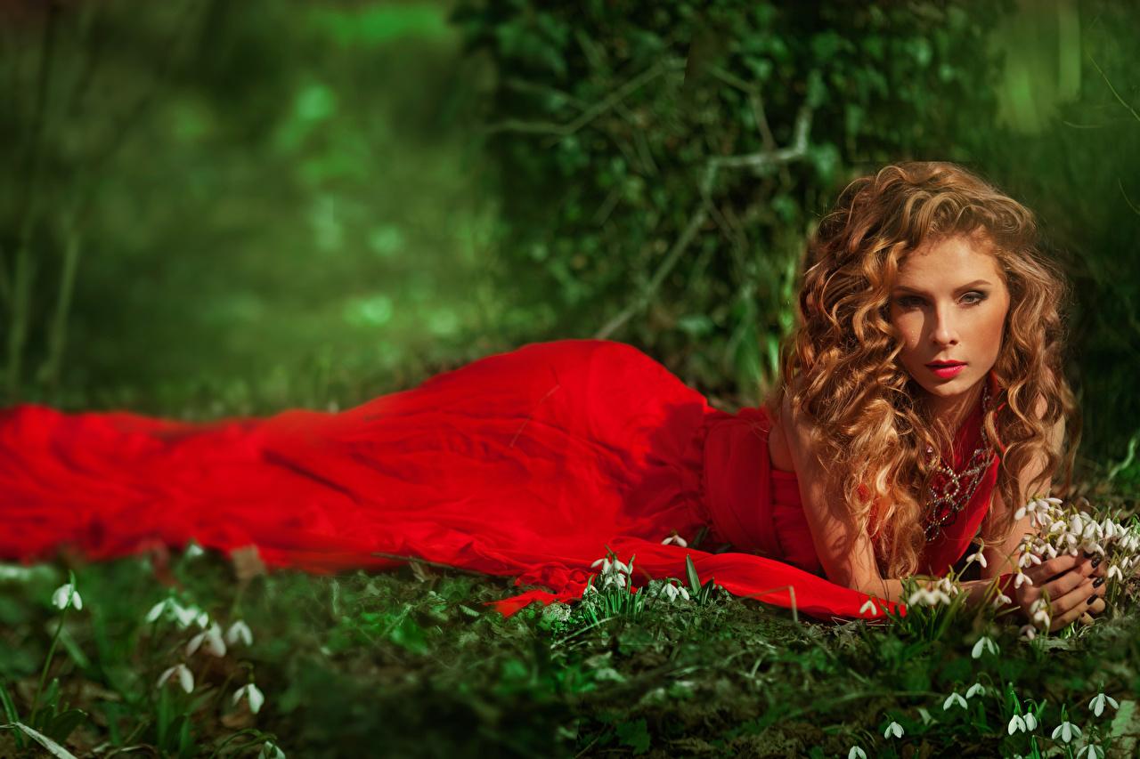 Фото Шатенка Красный молодые женщины Галантус смотрит Платье шатенки Девушки девушка красных красная красные молодая женщина Подснежники Взгляд смотрят платья