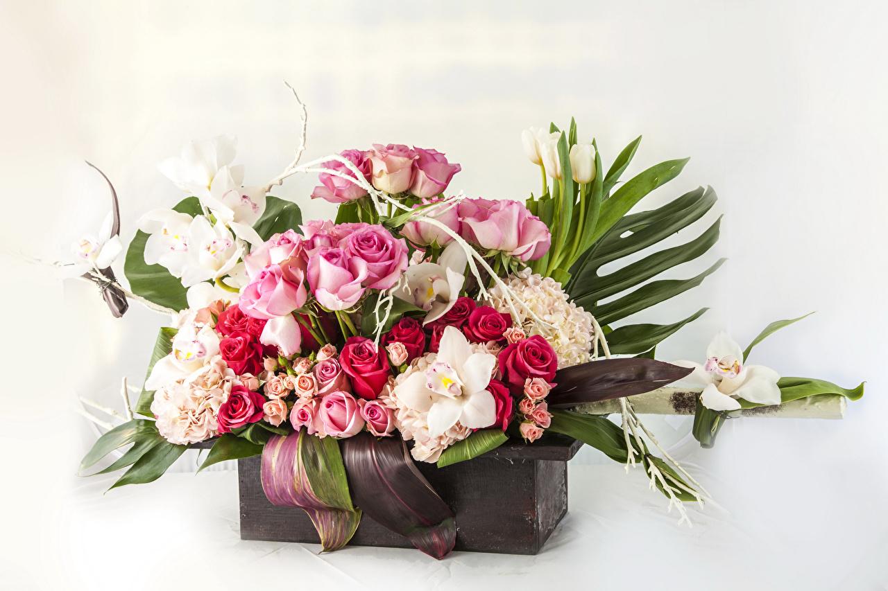 Картинка Букеты Розы орхидея Тюльпаны Цветы Белый фон букет роза тюльпан Орхидеи цветок белом фоне белым фоном