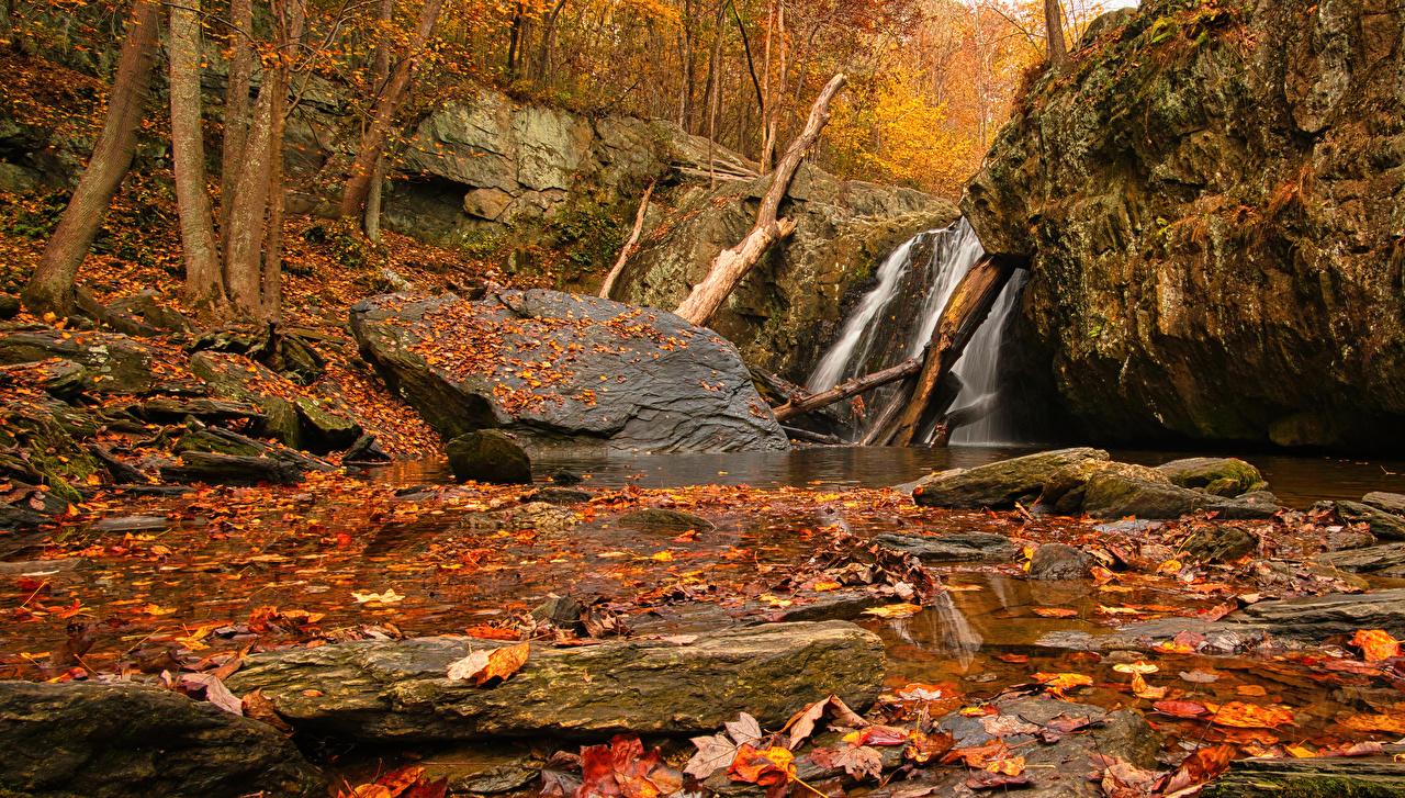 Фотографии лист Осень Скала Природа Водопады Камень Листва Листья Утес скале скалы осенние Камни