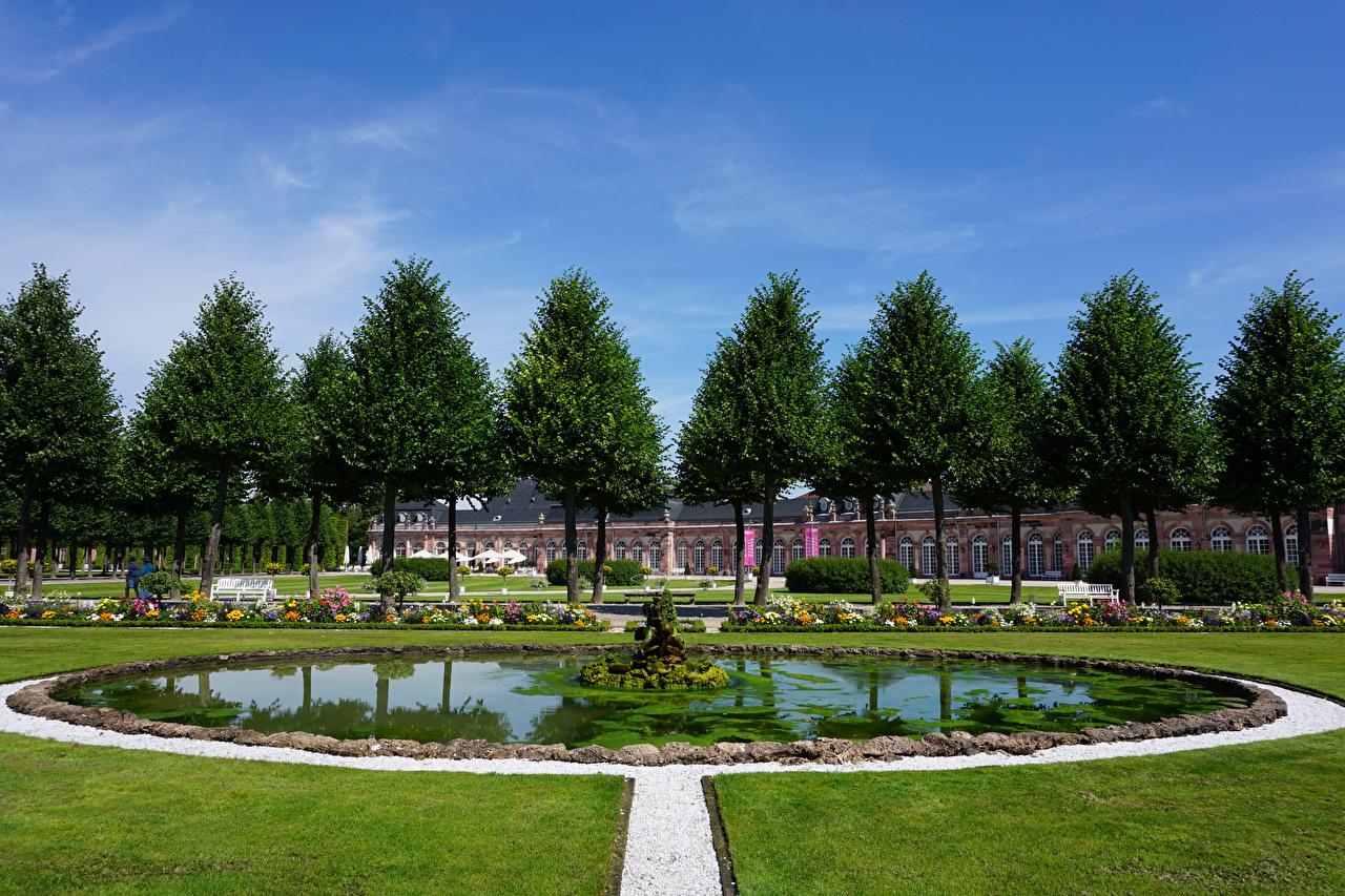 Фотография Дворец Германия Фонтаны Schwetzingen Palace Природа Парки газоне дерева дворца парк Газон дерево Деревья деревьев