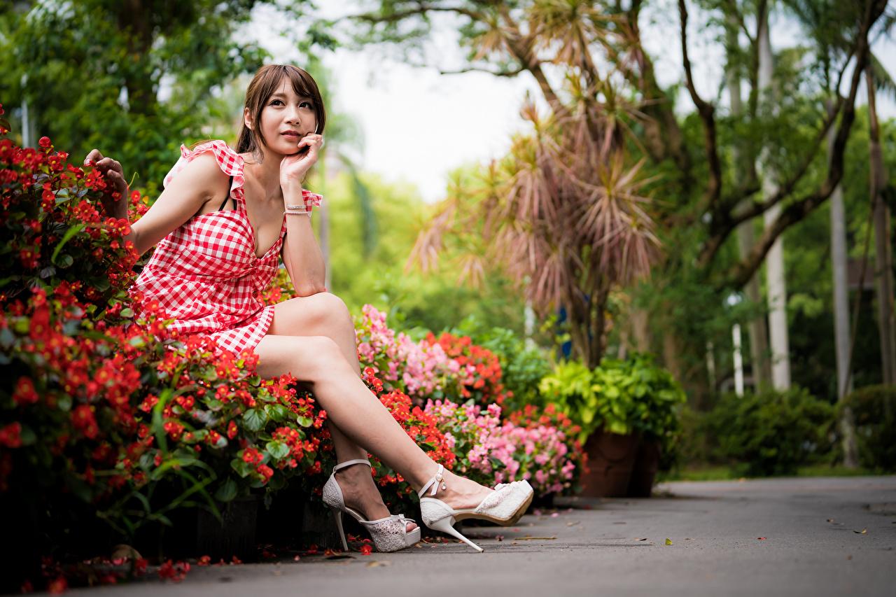 Картинки Шатенка Девушки ног Азиаты Сидит смотрит Платье шатенки девушка молодая женщина молодые женщины Ноги азиатки азиатка сидя сидящие Взгляд смотрят платья