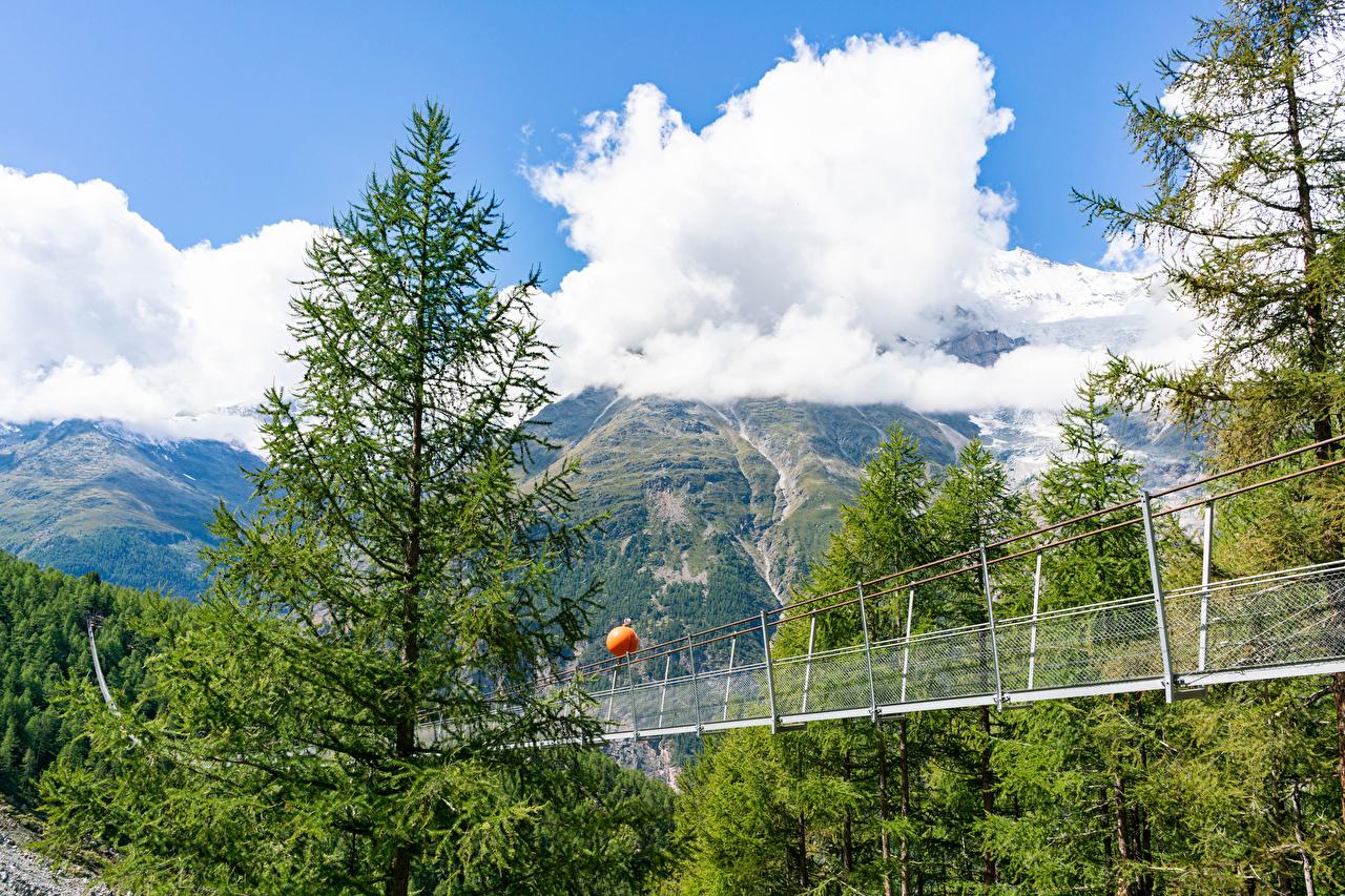 Обои для рабочего стола альп Швейцария Charles Kuonen suspension bridge ели гора мост Природа Облака Альпы Ель Горы Мосты облако облачно